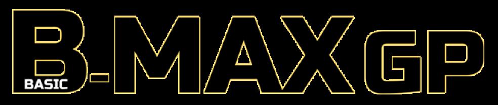 Basic-MAX GP 実行委員会